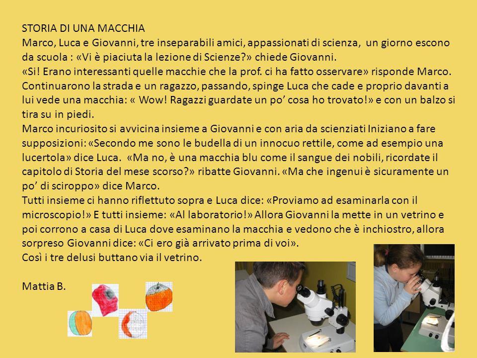 STORIA DI UNA MACCHIA Marco, Luca e Giovanni, tre inseparabili amici, appassionati di scienza, un giorno escono da scuola : «Vi è piaciuta la lezione