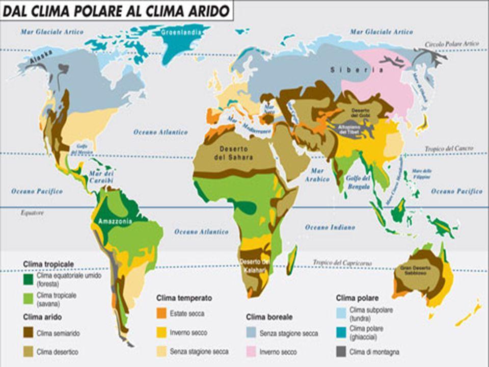 Incidenti Le savane presenti in regioni a piovosità relativamente elevate (per esempio in Africa orientale), dove il livello delle precipitazioni consentirebbe in linea di principio lo sviluppo di una foresta, dipendono spesso dagli incendi stagionali.