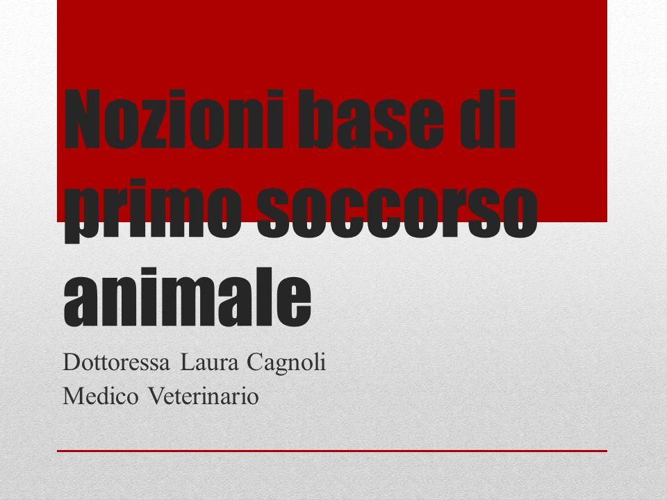 Nozioni base di primo soccorso animale Dottoressa Laura Cagnoli Medico Veterinario