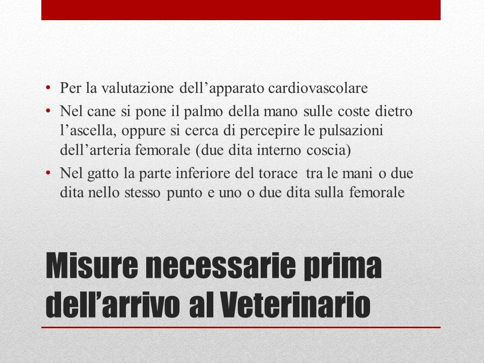Misure necessarie prima dellarrivo al Veterinario Per la valutazione dellapparato cardiovascolare Nel cane si pone il palmo della mano sulle coste die