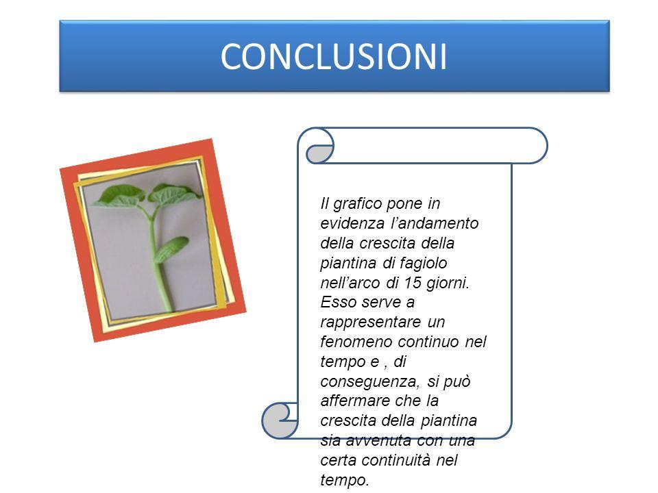 CONCLUSIONI Il grafico pone in evidenza landamento della crescita della piantina di fagiolo nellarco di 15 giorni.