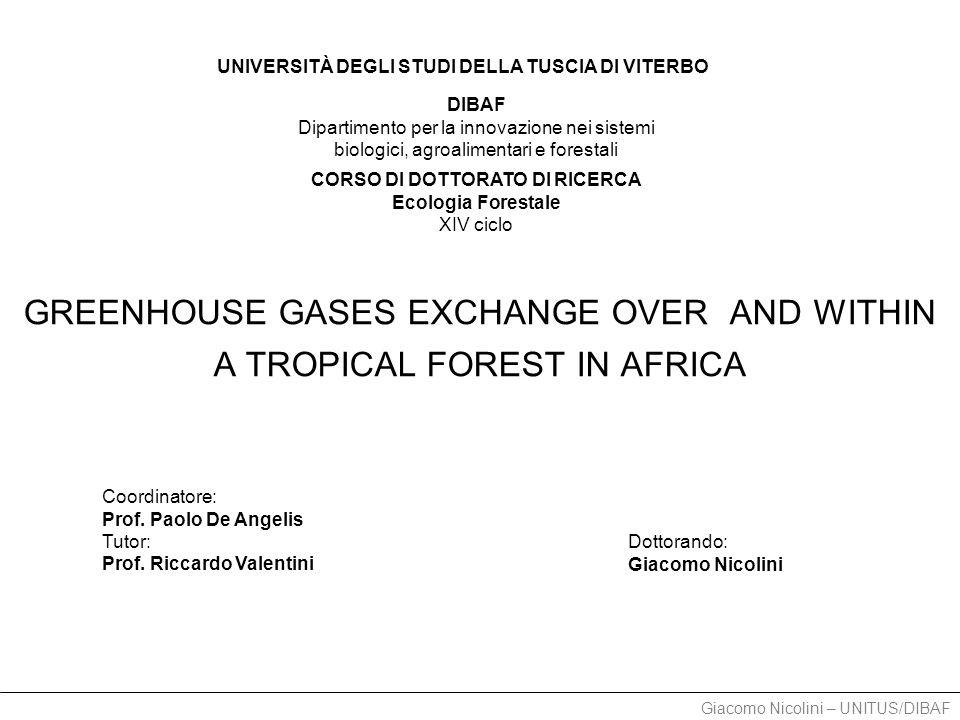 Giacomo Nicolini – UNITUS/DIBAF TOWER 2011.10 - oggi - WET season Footprint