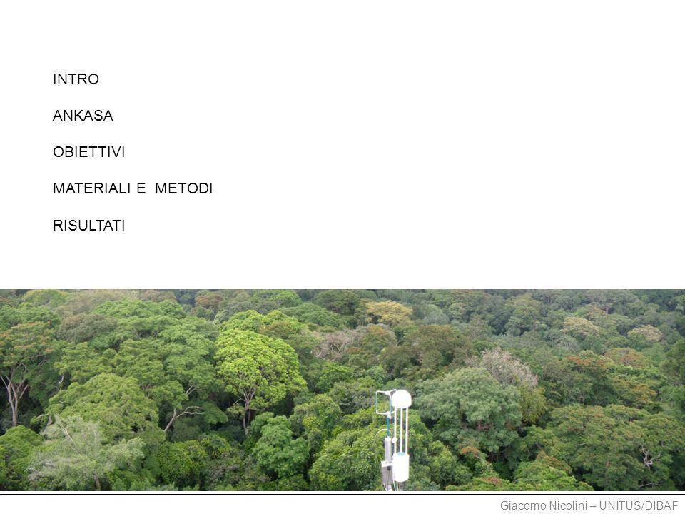 Giacomo Nicolini – UNITUS/DIBAF TOWER 2011.10 - oggi - WET season [CH 4 ] daily trend CH 4 daily flux weekly trend
