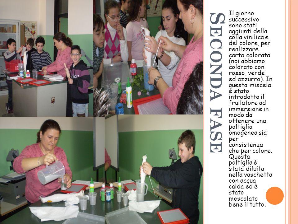 S ECONDA FASE Il giorno successivo sono stati aggiunti della colla vinilica e del colore, per realizzare carta colorata (noi abbiamo colorato con rosso, verde ed azzurro).
