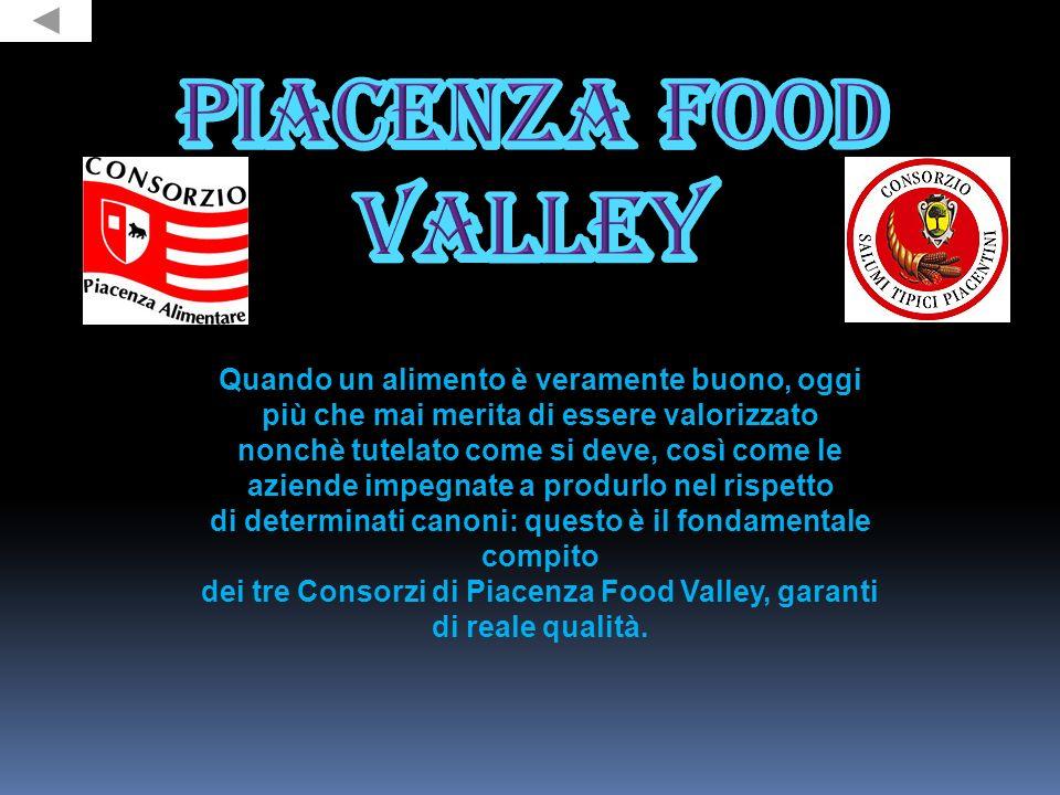 In Europa Piacenza si trova nella parte settentrionale dell Italia, affacciata sulla riva destra del Po, primo fiume per importanza del Paese.