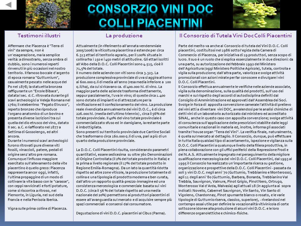 Testimoni illustri Affermare che Piacenza è Terra di vini da sempre, non è un esagerazione, ma la semplice verità: a dimostrarlo, senza ombra di dubbio, sono i numerosi reperti rinvenuti in più occasioni nel nostro territorio.