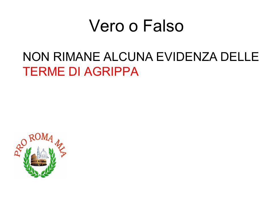 Vero o Falso NON RIMANE ALCUNA EVIDENZA DELLE TERME DI AGRIPPA FALSO
