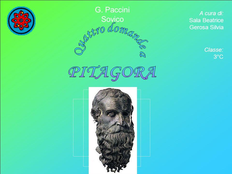 A cura di: Sala Beatrice Gerosa Silvia G. Paccini Sovico Classe: 3°C