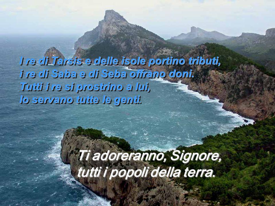 I re di Tarsis e delle isole portino tributi, i re di Saba e di Seba offrano doni.