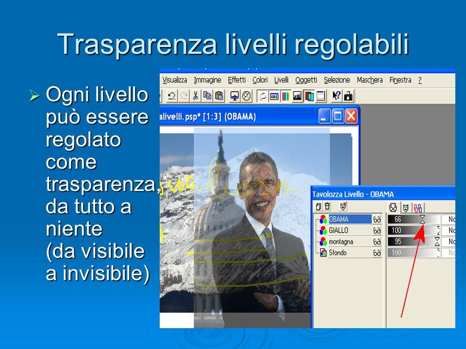 Trasparenza livelli regolabili Ogni livello può essere regolato come trasparenza, da tutto a niente (da visibile a invisibile) Ogni livello può essere regolato come trasparenza, da tutto a niente (da visibile a invisibile)