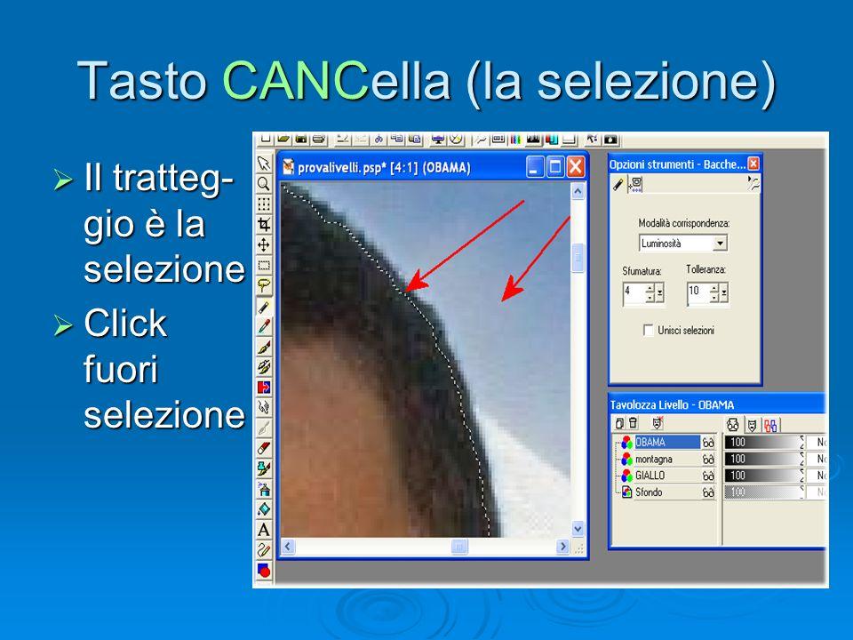 Tasto CANCella (la selezione) Il tratteg- gio è la selezione Il tratteg- gio è la selezione Click fuori selezione Click fuori selezione