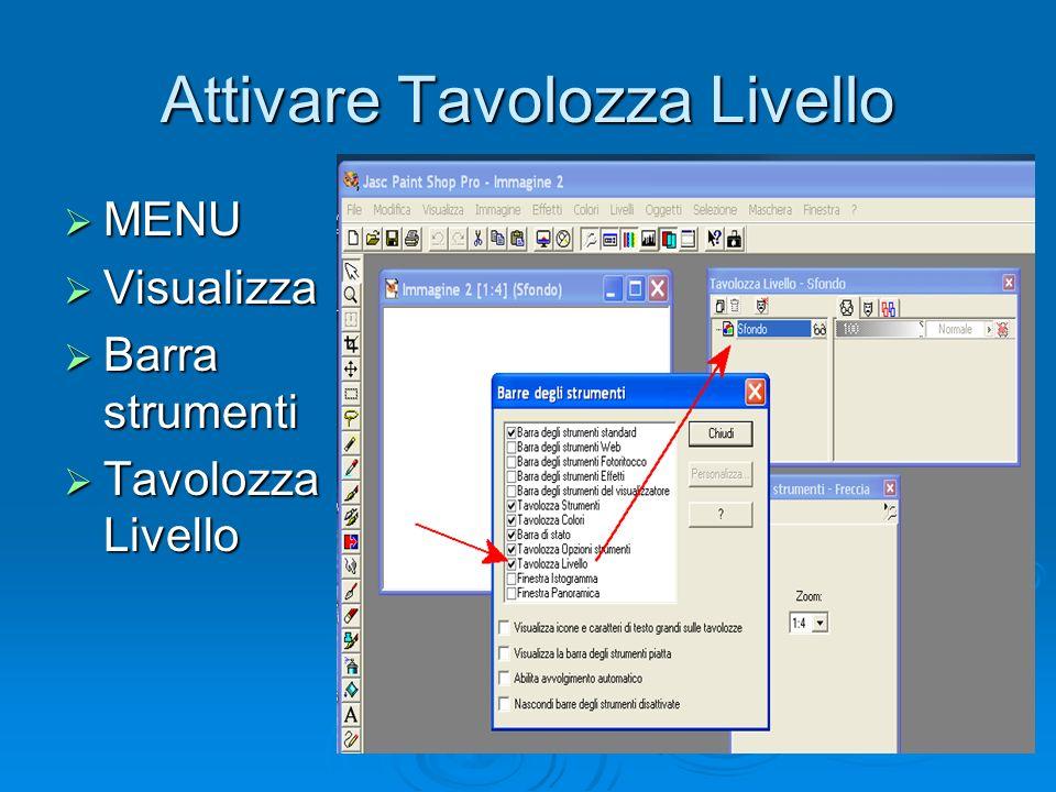 Attivare Tavolozza Livello MENU MENU Visualizza Visualizza Barra strumenti Barra strumenti Tavolozza Livello Tavolozza Livello
