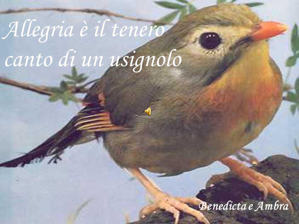 Allegria è il tenero canto di un usignolo Benedicta e Ambra