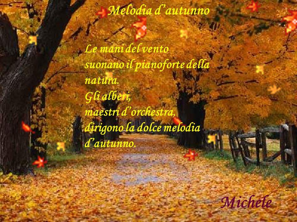 Melodia dautunno Le mani del vento suonano il pianoforte della natura. Gli alberi, maestri dorchestra, dirigono la dolce melodia dautunno. Michele