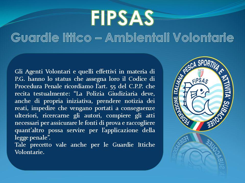 Gli Agenti Volontari e quelli effettivi in materia di P.G. hanno lo status che assegna loro il Codice di Procedura Penale ricordiamo lart. 55 del C.P.