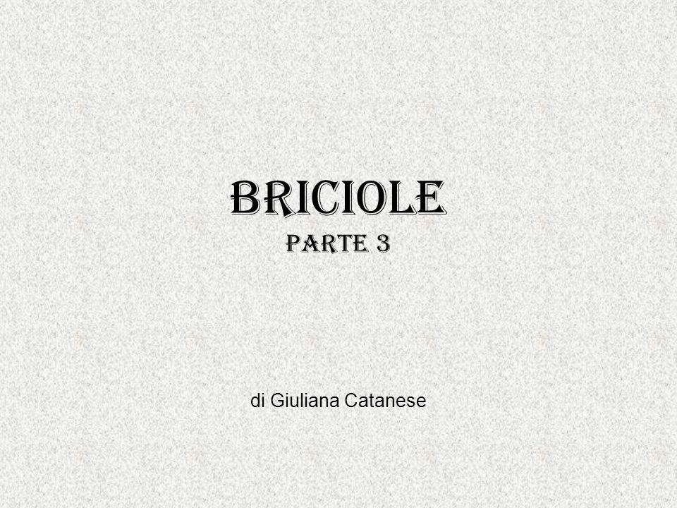Briciole parte 3 di Giuliana Catanese