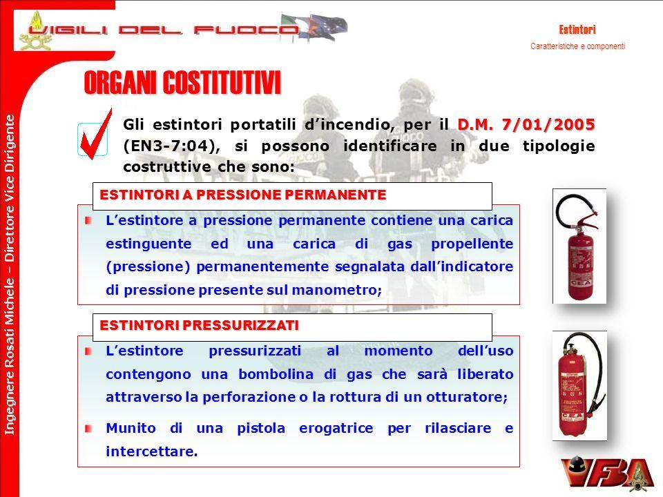 ORGANI COSTITUTIVI D.M. 7/01/2005 Gli estintori portatili dincendio, per il D.M. 7/01/2005 (EN3-7:04), si possono identificare in due tipologie costru