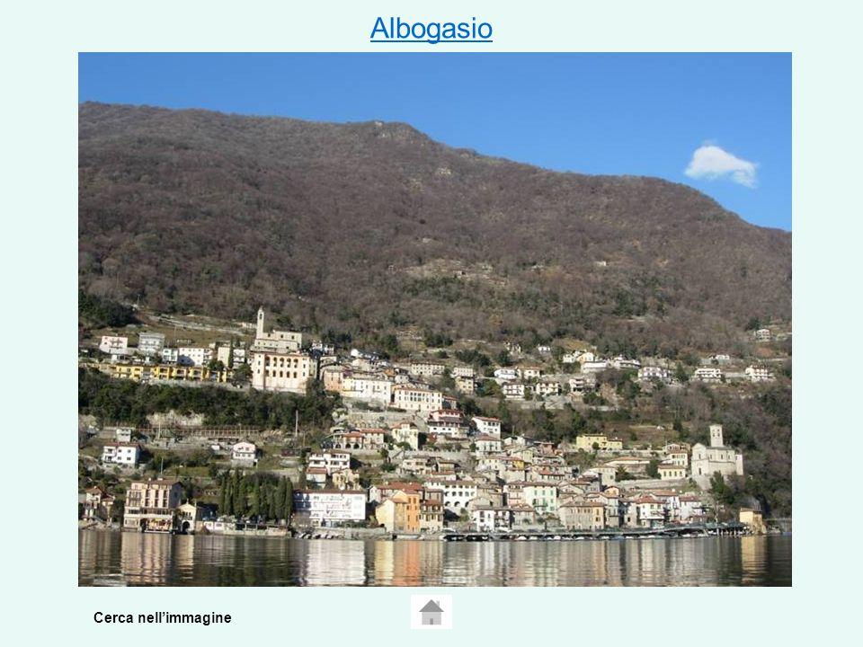 Albogasio Cerca nellimmagine