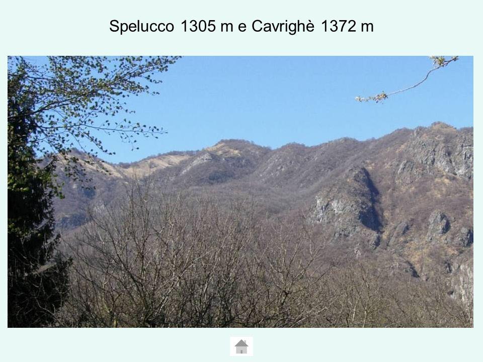 Spelucco 1305 m e Cavrighè 1372 m