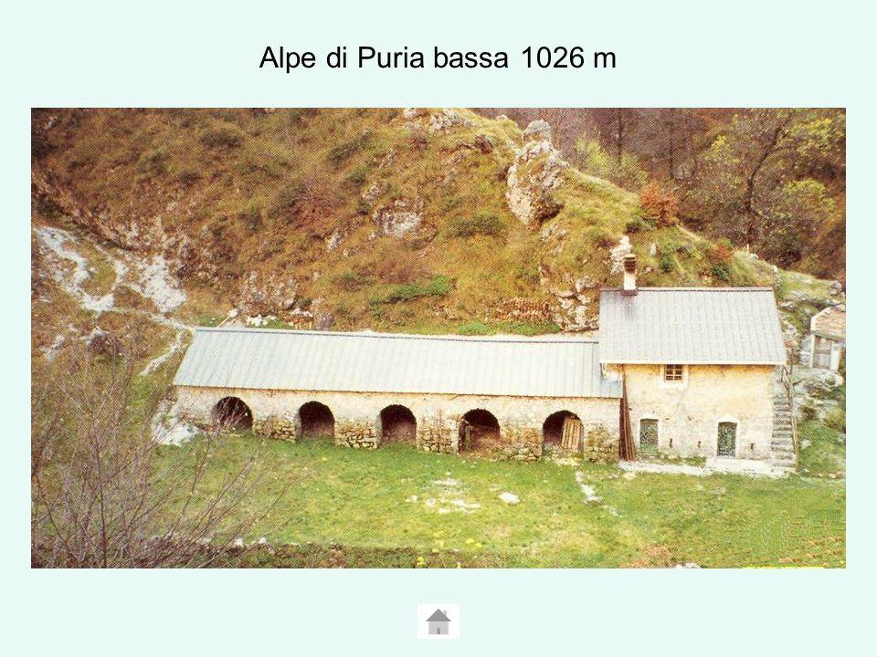 Alpe di Puria bassa 1026 m