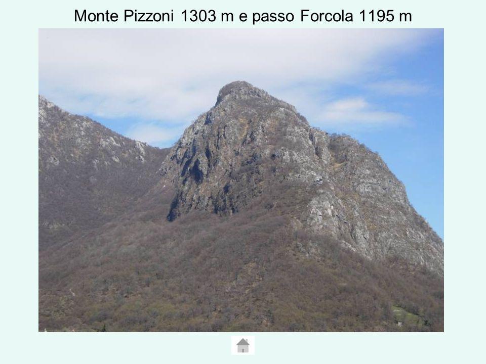 Monte Pizzoni 1303 m e passo Forcola 1195 m