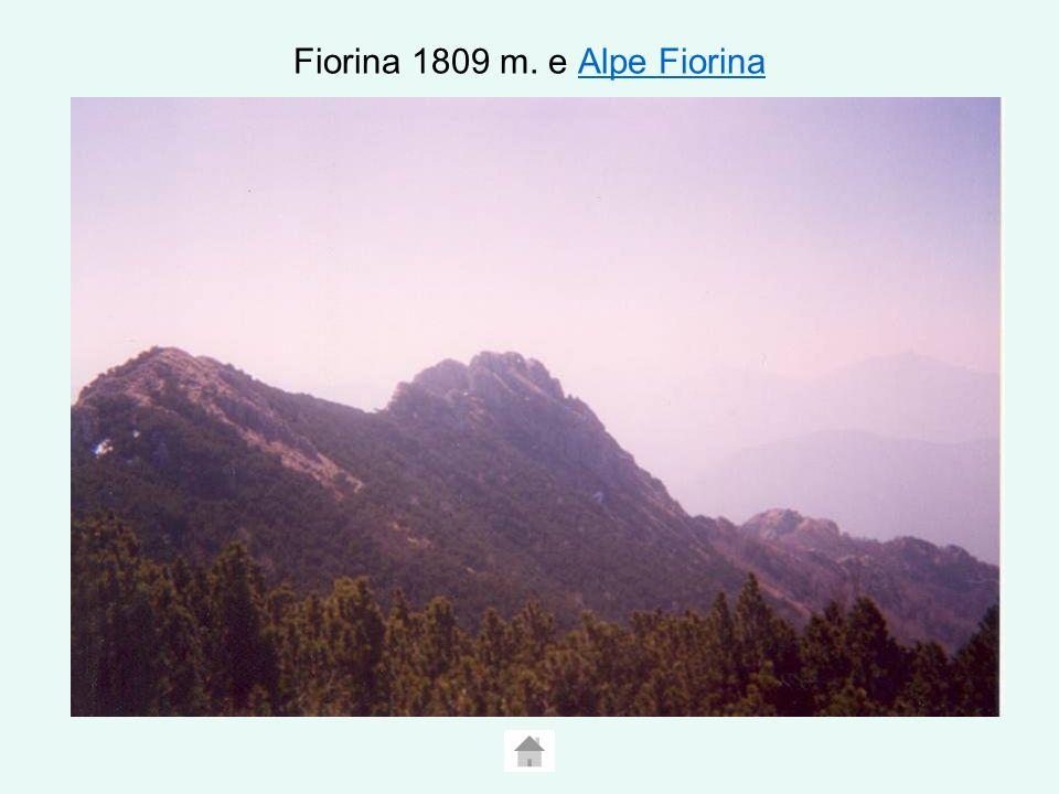 Fiorina 1809 m. e Alpe FiorinaAlpe Fiorina
