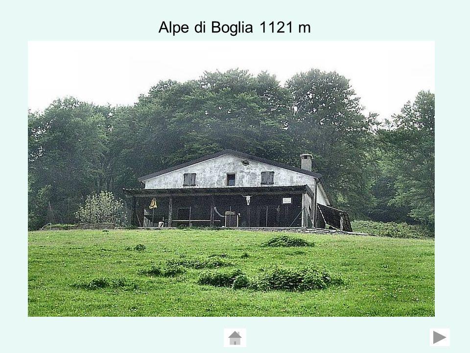 Alpe di Boglia 1121 m