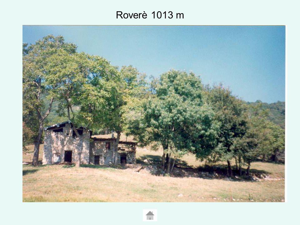 SAN ROCCO SAN ROCCO 618 m Chiesetta di San Rocco A circa un chilometro, a monte di Dasio, verso occidente, si trova l Oratorio di San Rocco, a pianta circolare che ricorda le chiesette inserite nel perimetro dei lazzaretti per il ricovero degli appestati nelle epidemie del XVII secolo.