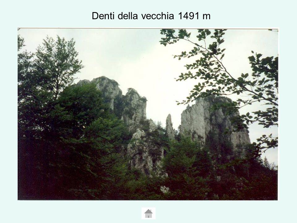 Denti della vecchia 1491 m