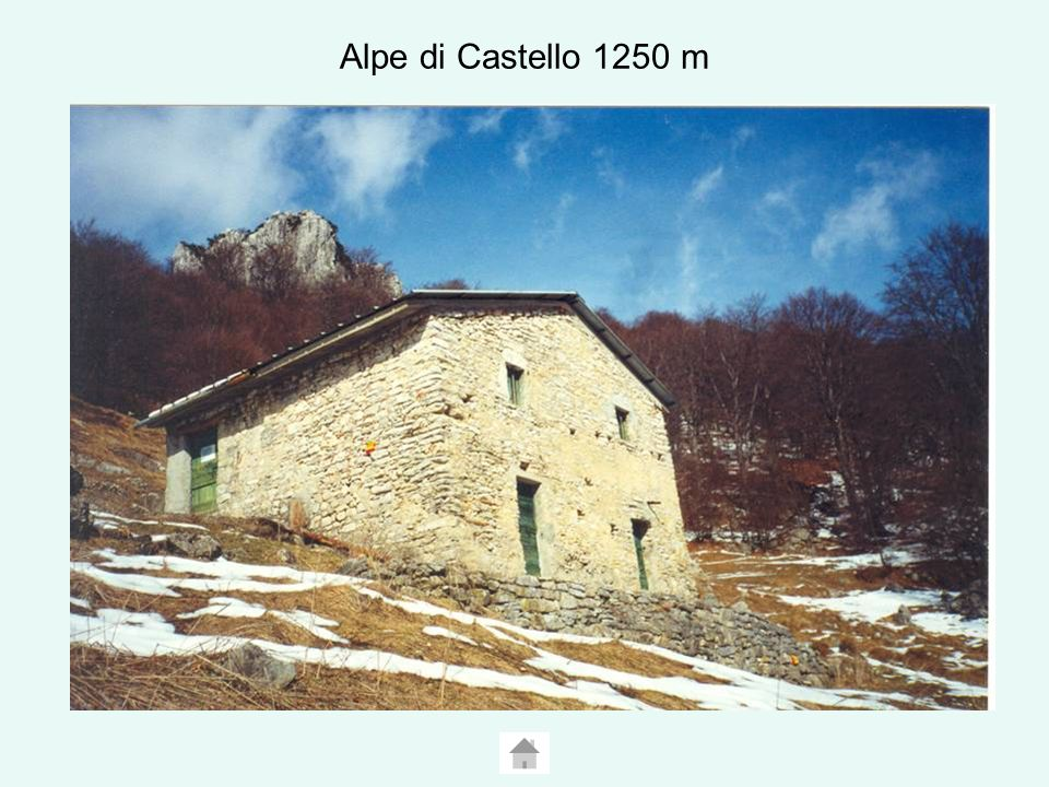 Albogasio 304 m In epoca medioevale Albogasio fu il primo nucleo abitativo della rocca di S.