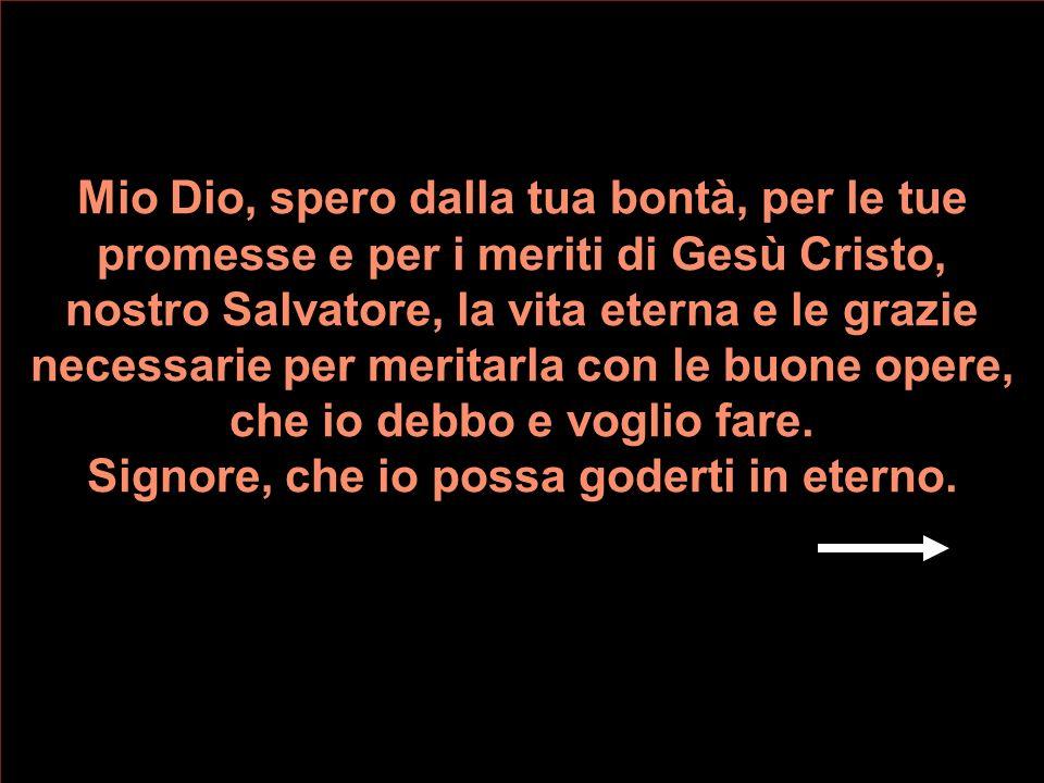 Mio Dio, perché sei verità infallibile, credo fermamente tutto quello che Tu hai rivelato e che la Santa Chiesa ci propone a credere. Credo in Te, uni