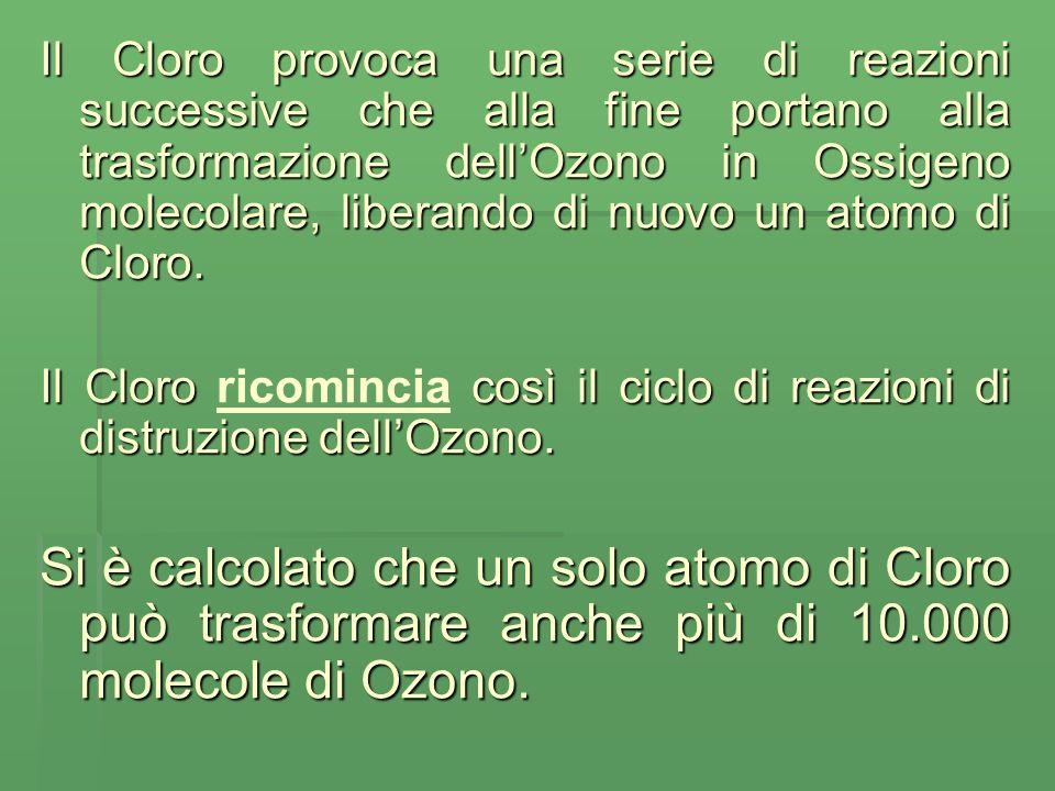 Il Cloro provoca una serie di reazioni successive che alla fine portano alla trasformazione dellOzono in Ossigeno molecolare, liberando di nuovo un atomo di Cloro.