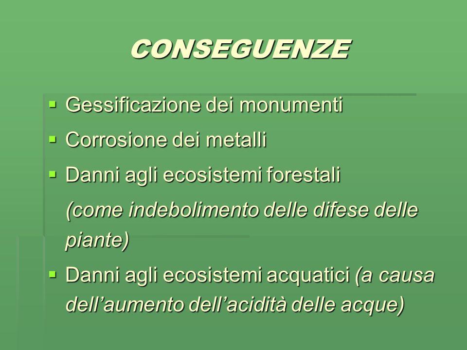 CONSEGUENZE Gessificazione dei monumenti Corrosione dei metalli Danni agli ecosistemi forestali (come indebolimento delle difese delle piante) Danni agli ecosistemi acquatici (a causa dellaumento dellacidità delle acque)