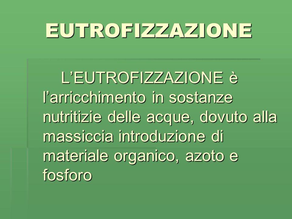 EUTROFIZZAZIONE LEUTROFIZZAZIONE è larricchimento in sostanze nutritizie delle acque, dovuto alla massiccia introduzione di materiale organico, azoto e fosforo