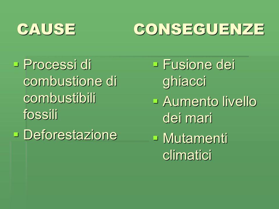 CAUSE CONSEGUENZE Processi di combustione di combustibili fossili Deforestazione Fusione dei ghiacci Aumento livello dei mari Mutamenti climatici