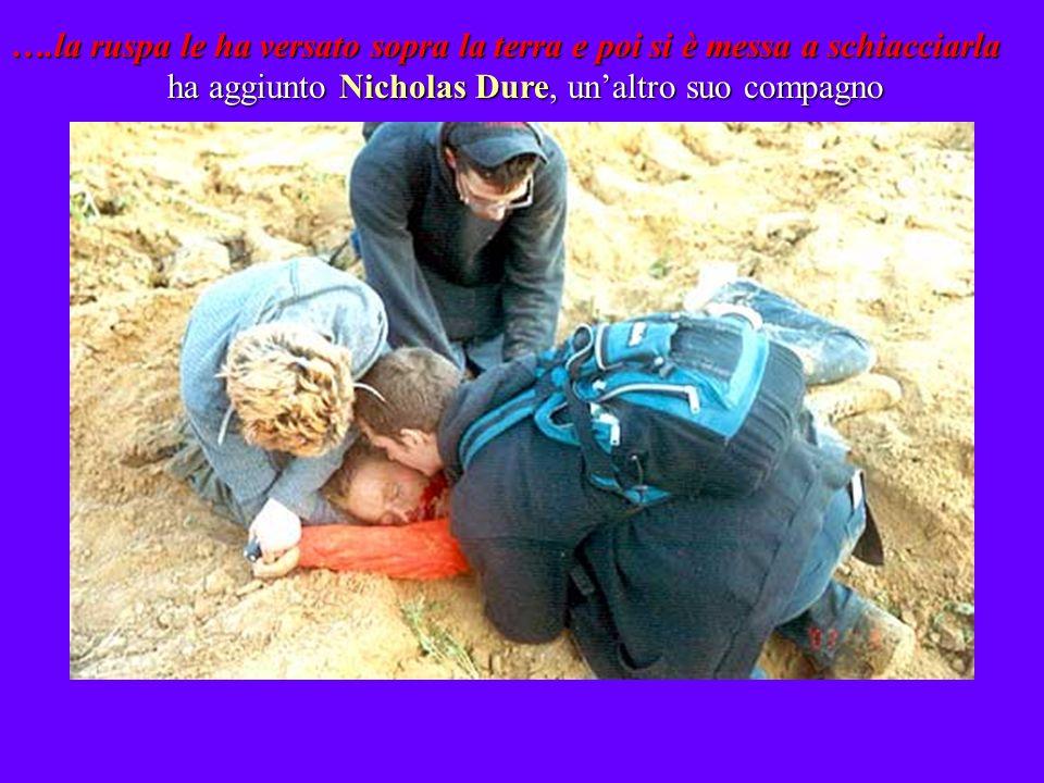 ….la ruspa le ha versato sopra la terra e poi si è messa a schiacciarla ha aggiunto Nicholas Dure, unaltro suo compagno