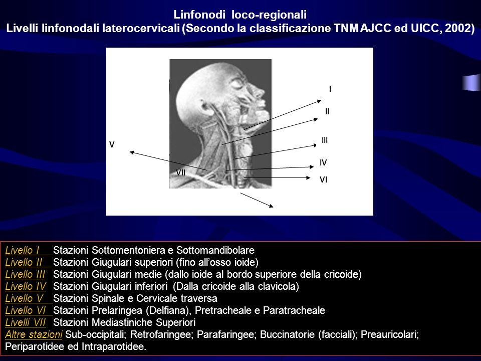 I II III IV V VI VII Linfonodi loco-regionali Livelli linfonodali laterocervicali (Secondo la classificazione TNM AJCC ed UICC, 2002) Livello IStazion