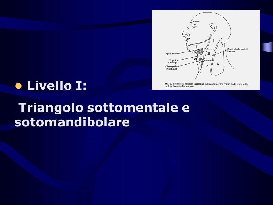 Livello I: Triangolo sottomentale e sotomandibolare