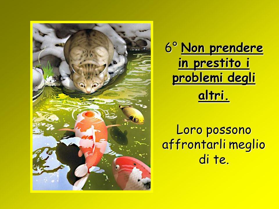 6° Non prendere in prestito i problemi degli altri. Loro possono affrontarli meglio di te.