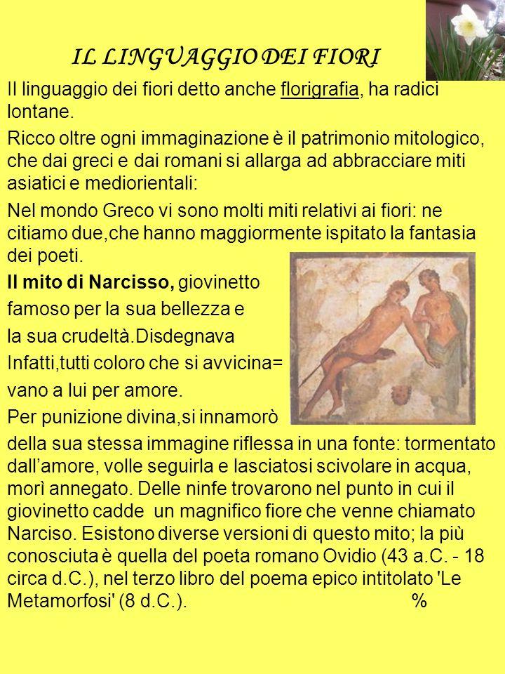 Il mito di Giacinto è forse meno conosciuto, ma altrettanto interessante e molto caro a molti poeti antichi, tra i quali Plinio, Virgilio e Teocrito.