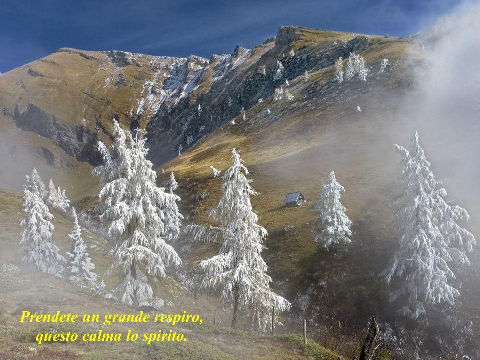 Prendete un grande respiro, questo calma lo spirito.