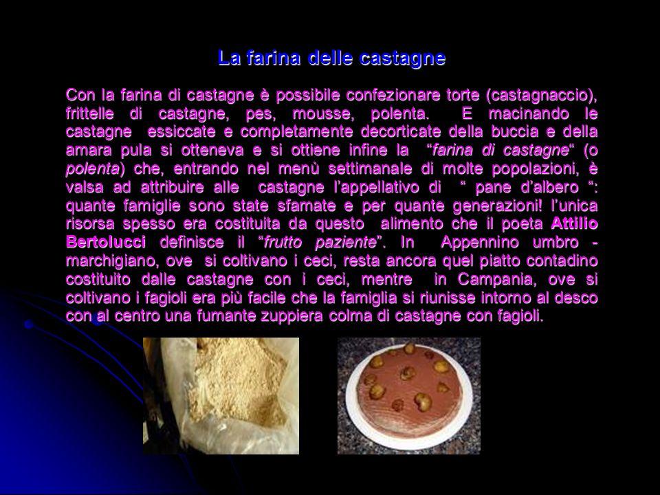 La farina delle castagne Con la farina di castagne è possibile confezionare torte (castagnaccio), frittelle di castagne, pes, mousse, polenta. E macin