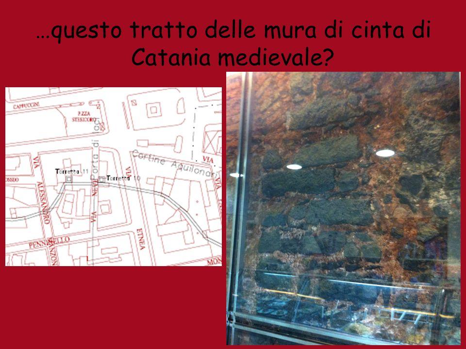 …questo tratto delle mura di cinta di Catania medievale?