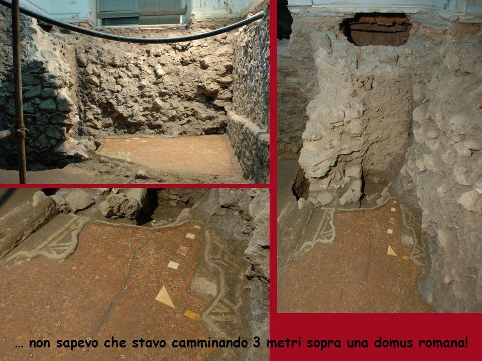 … non sapevo che stavo camminando 3 metri sopra una domus romana!