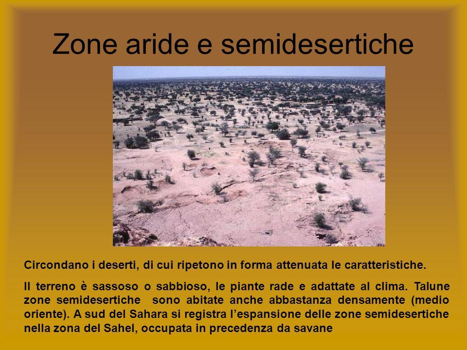 Zone aride e semidesertiche Circondano i deserti, di cui ripetono in forma attenuata le caratteristiche. Il terreno è sassoso o sabbioso, le piante ra