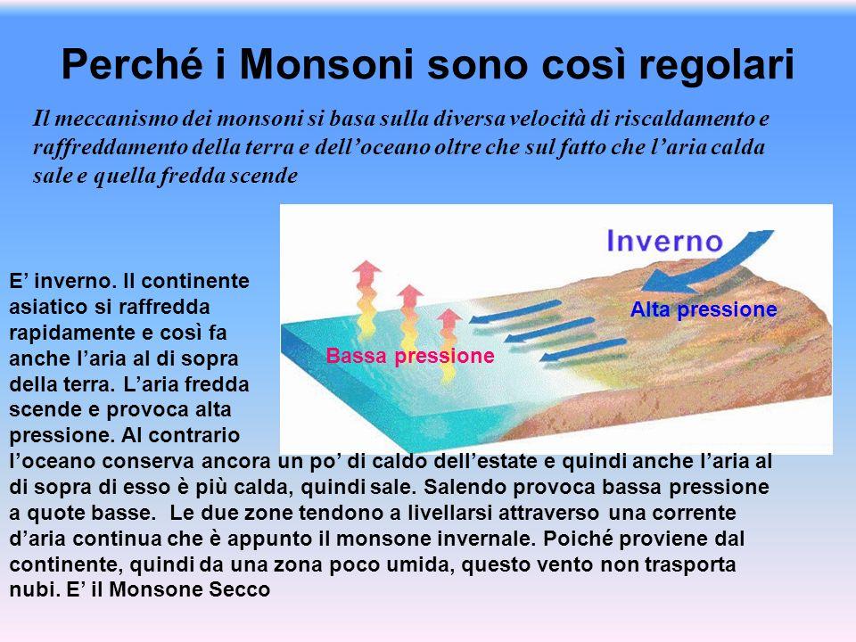 Perché i Monsoni sono così regolari Il meccanismo dei monsoni si basa sulla diversa velocità di riscaldamento e raffreddamento della terra e dellocean