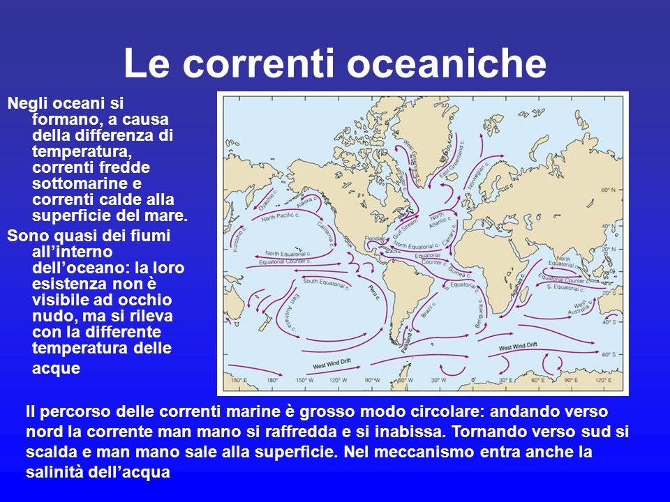 Le correnti oceaniche Negli oceani si formano, a causa della differenza di temperatura, correnti fredde sottomarine e correnti calde alla superficie d