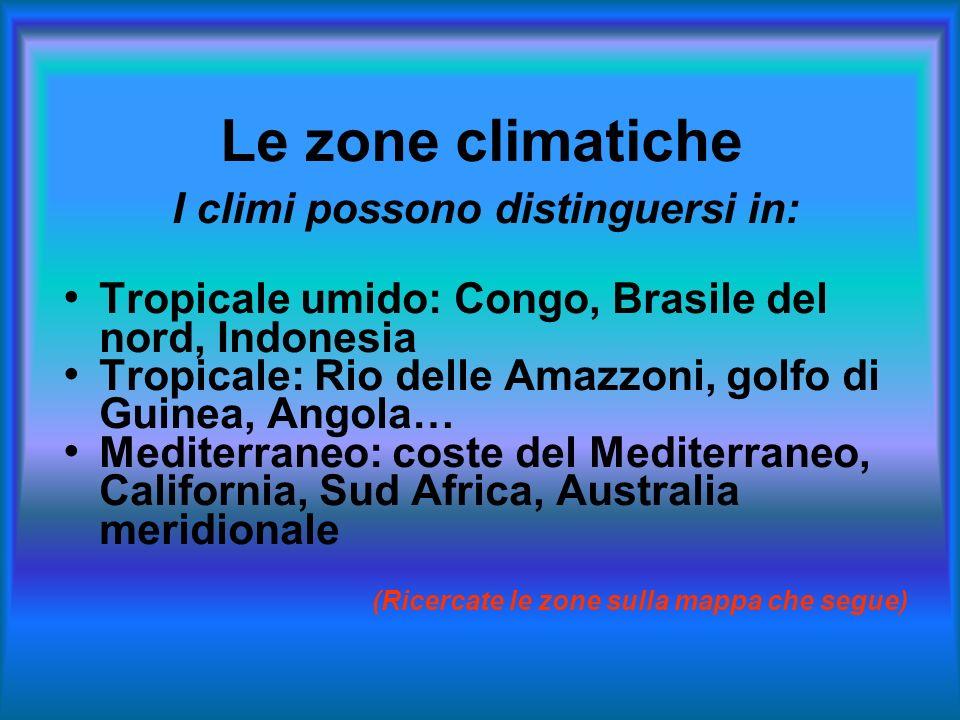 Le zone climatiche I climi possono distinguersi in: Tropicale umido: Congo, Brasile del nord, Indonesia Tropicale: Rio delle Amazzoni, golfo di Guinea