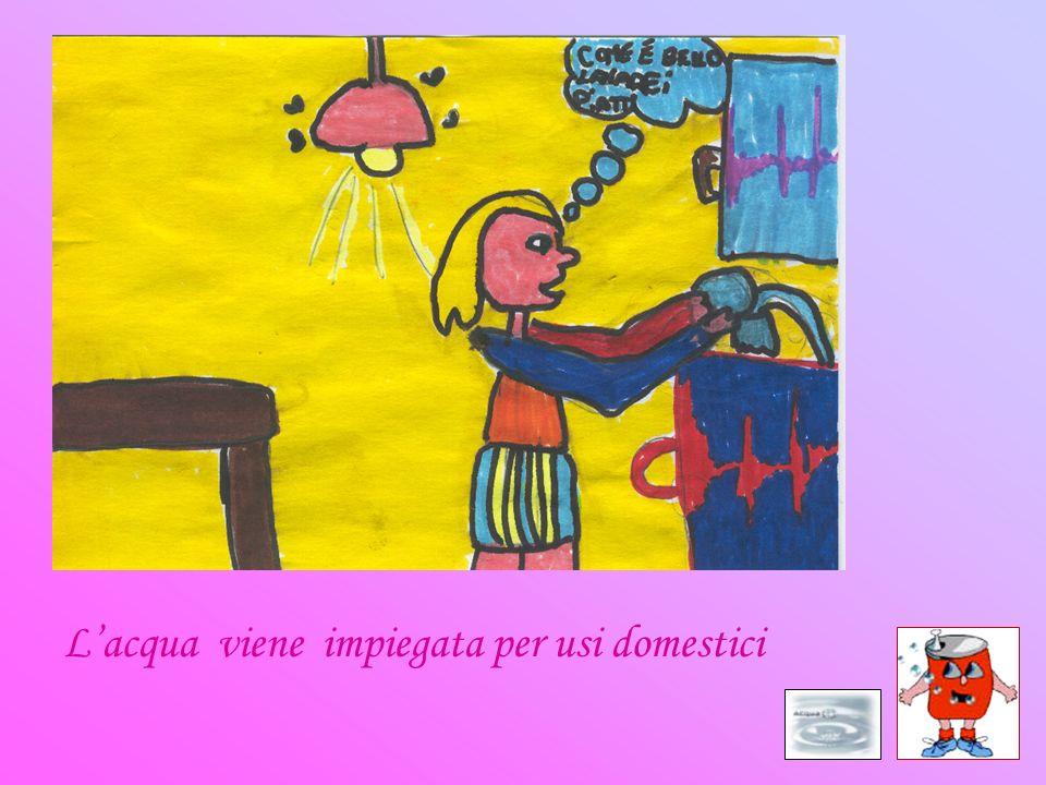 Lacqua viene impiegata per usi domestici