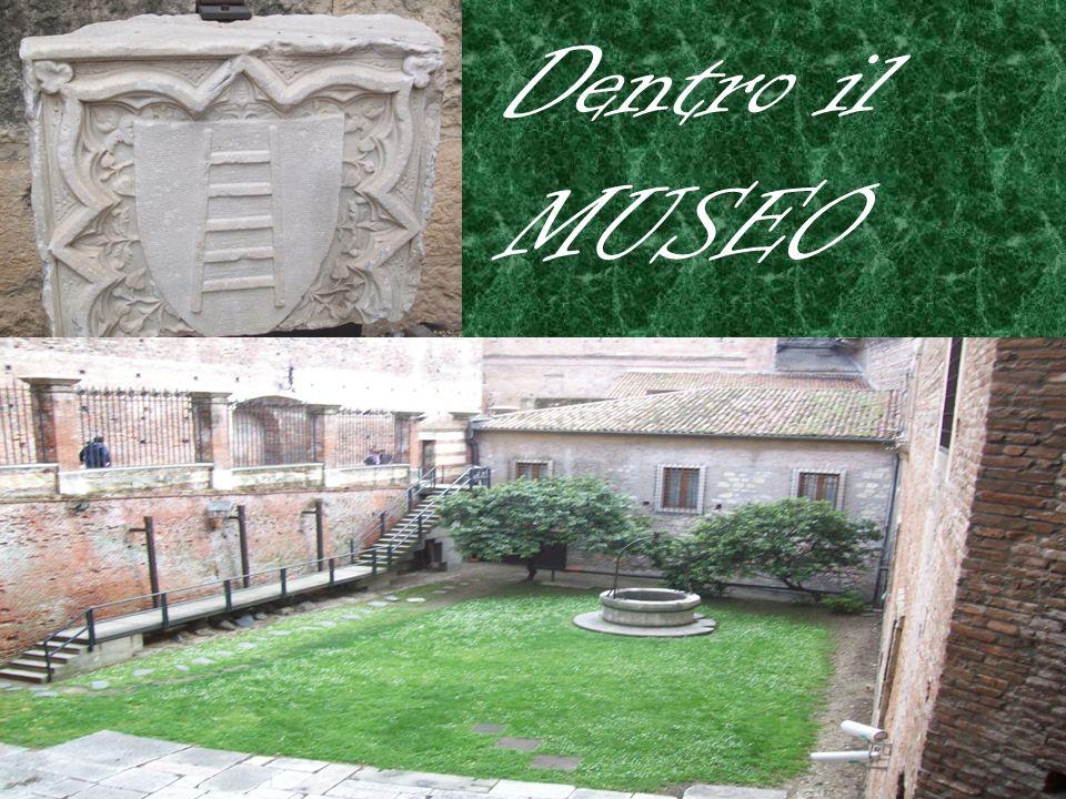Dentro il MUSEO